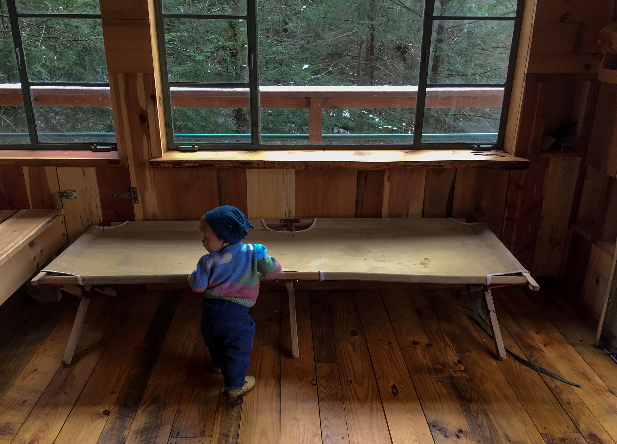 First Snow at Treehouse - Todd Roeth